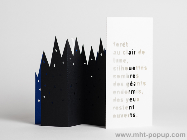 Livre d'artiste pages accordéon, Forêt de Nuit, vue du livre de dos avec texte découpé sur l'arrière de la reliure
