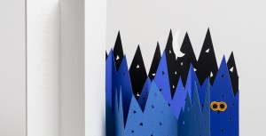 Livre d'artiste Forêt de nuit. Détail