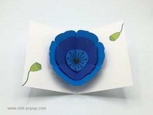 Carte pop-up Pavot bleu, vue de dessus de la carte ouverte et des motifs intérieurs