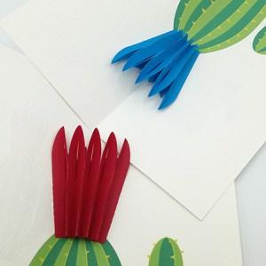 Cartes pop-up Fleur de cactus, modèle éventail, vue d'ensemble des 2 variantes
