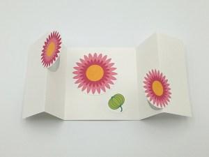 Carte à volets, motifs de fleurs de marguerite rose, vue de dessus carte ouverte