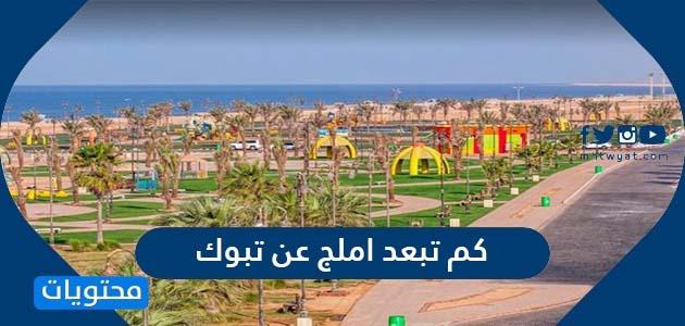 كم تبعد املج عن تبوك المسافة بين املج والمدن السعودية المختلفة موقع محتويات