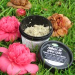 Lush Angels on Bare skin Fresh Facial Cleanser