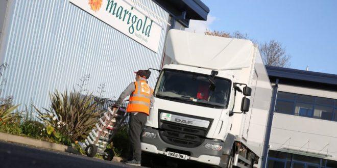 Carrier Transicold Marigold