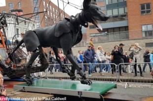 Cobalt Conveyors and Liverpools giants