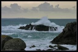 wave_1001