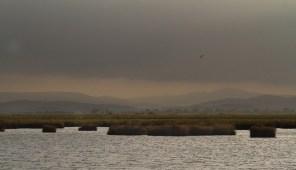 L'étang de l'Ayrolles