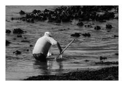 Pêcheur de crevettes