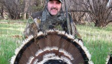 Colorado Merriam Turkey