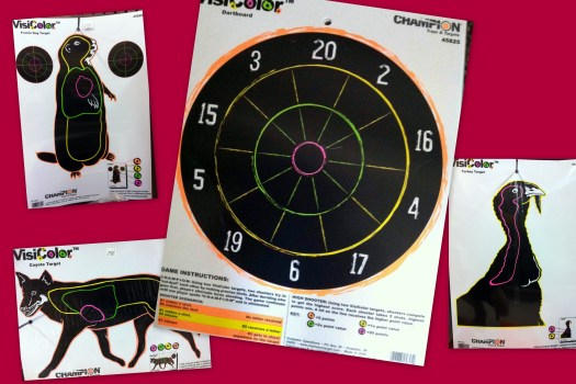 Shooting targets by Champion