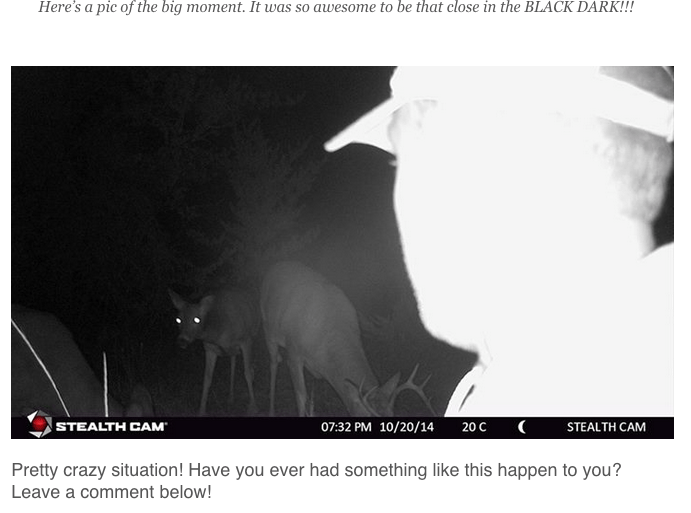 Gamecam-pic-whitetail-overload-live2hunt-tv