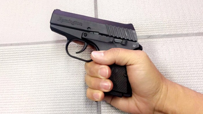 concealed-carry-handgun-rm380-remington-380-mia-anstine-photo
