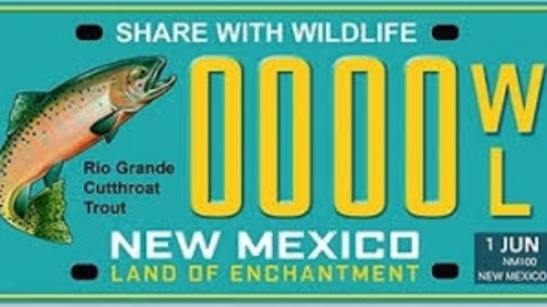 License Plate for Conservation Features State Fish – New Mexico Mia