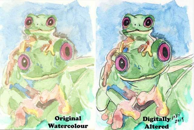 Momma Tree Frog - Watercolour Sample then Digitally Altered