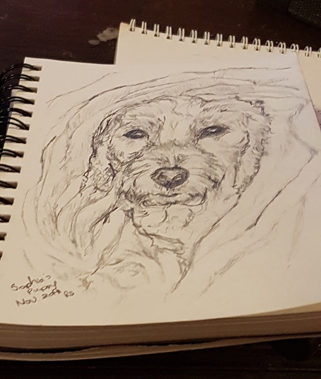 Pencily Drawing of Sofia's Dog
