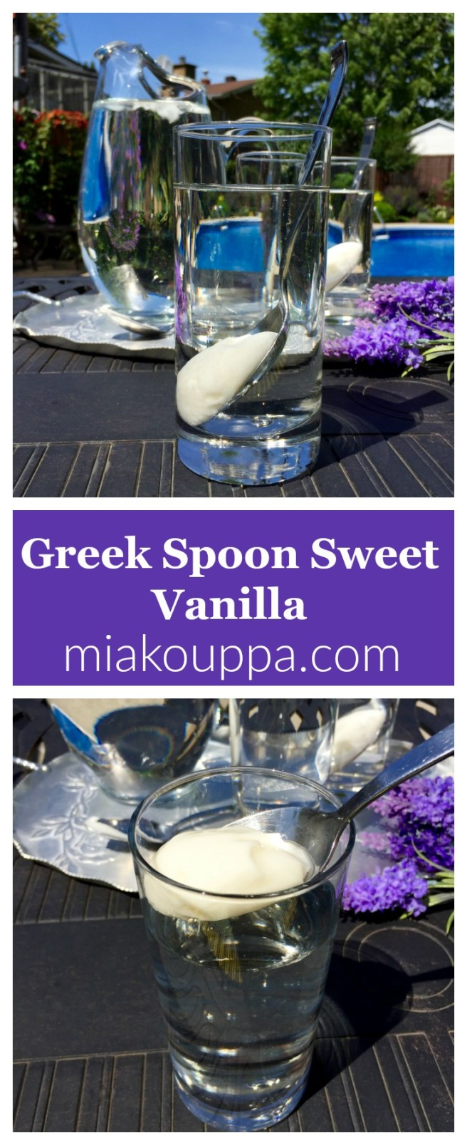 Greek spoon sweet vanilla