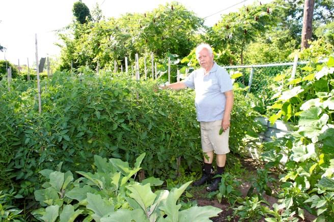 Our parents garden