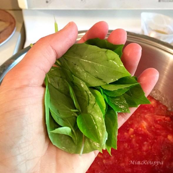 Chunky tomato sauce, and fresh basil
