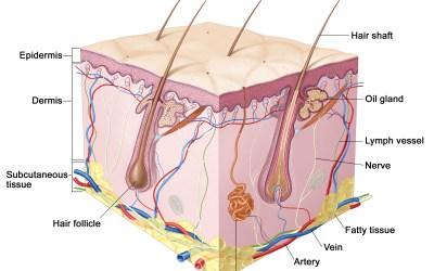 Skin Cancer Treatment in Miami