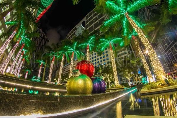 christmas lights miami # 8