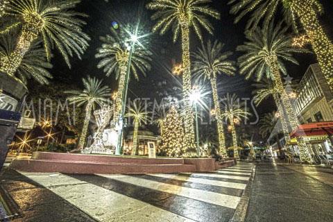 christmas lights miami # 73