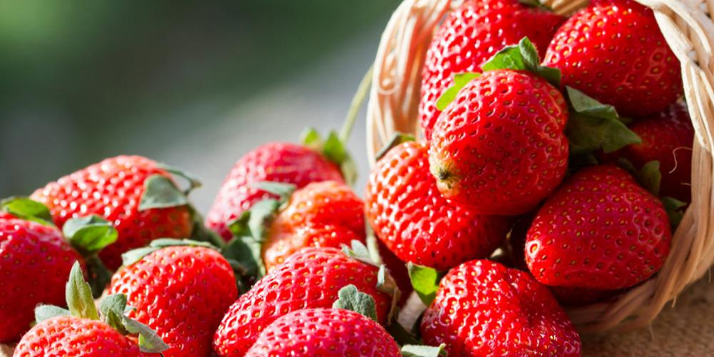 5 Odd Things You Didn't Know About The Troy Strawberry Festival
