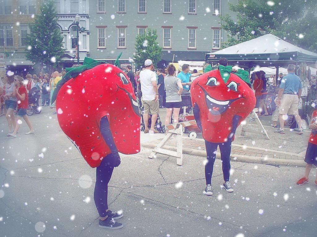 Troy Strawberry Festival Rescheduled for Winter