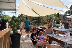 Wynwood Yard - Shaded Seating