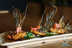 American Kitchen Bar and Grill - Lion Fish Wings
