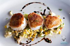 Blue Collar - Seared Diver Scallops