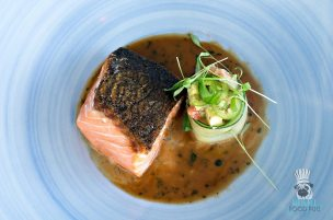 Terra Mare - Seared Salmon