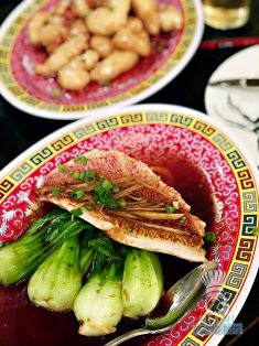 Blackbrick - Steamed Snapper