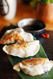 Tanuki - Brunch - Chicken and Pork Gyoza