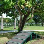 Tropical Park Dog Park
