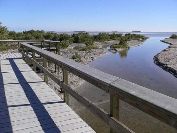 everglades-snake-bight-trail