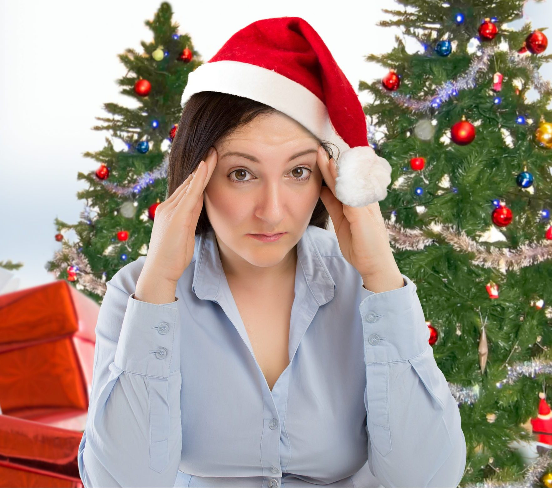 Recycling Schedule 2021 Miami Dade Christmas How And Where To Recycle Your Christmas Tree In Miami Miami On The Cheap