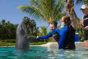Miami Seaquarium: Florida resident rates