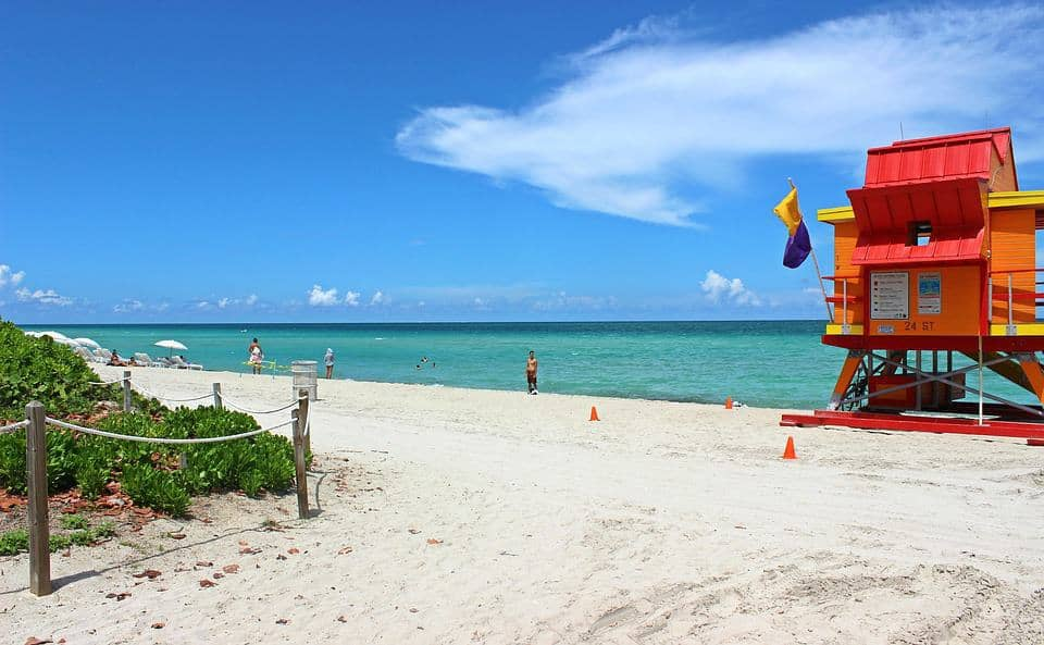 Free Amp Cheap Things To Do In Miami This Week Miami On