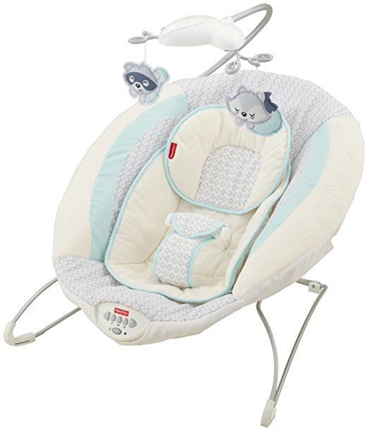 Fisher-Price Moonlight Meadow Deluxe Bouncer 3