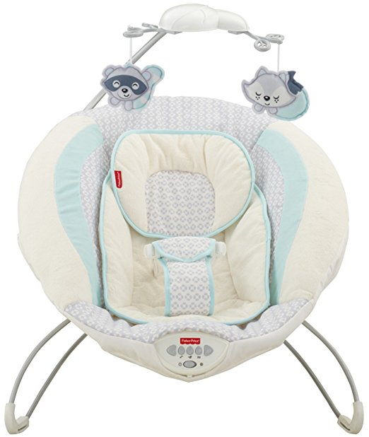 Fisher-Price Moonlight Meadow Deluxe Bouncer 6