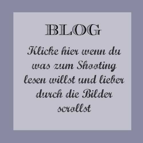 11 Blog