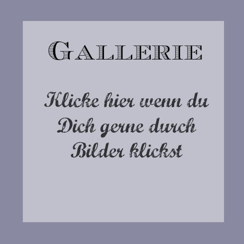 11Gallerie
