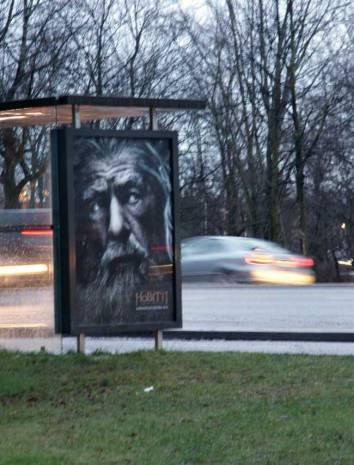 ©Mia Salminen, Gandalf