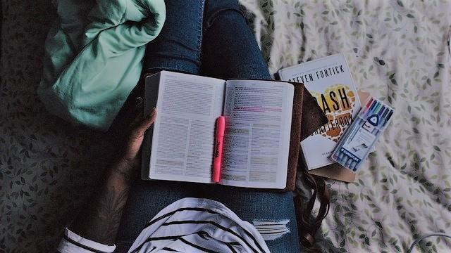 Lernen_Frau_Studium_Buecher_Bloggen
