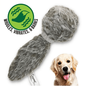 Keep Your Dog Occupied With Interactive Dog Toys
