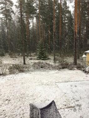 Lunta!