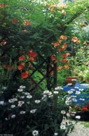 my-garden-magazine-2004-31-venetia-kajiyama-micah-gampel