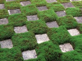 tofukuji-hojo-garden-1939-by-mirei-shigemori-kyoto-micah-gampel-2012