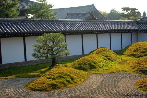 tofukuji-micah-gampel-kyoto-nikon-d70s-2010-10-04_46s