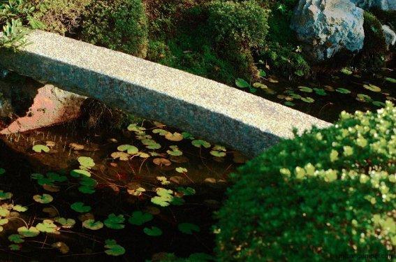 tofukuji-temple-garden-kyoto-micah-gampel-2009